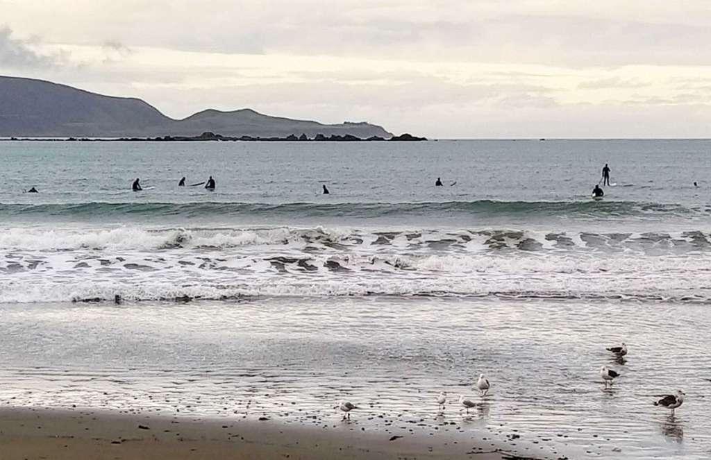 Maranui - surfers